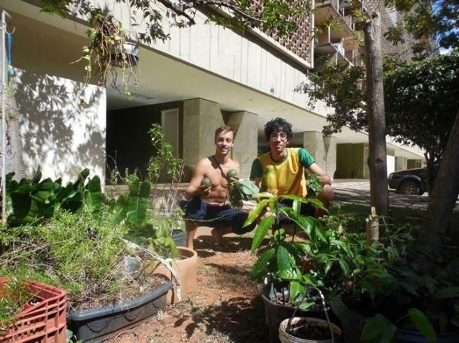re-ação hortas urbanas