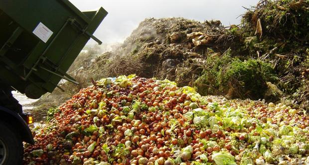 desperdicio_alimento_reprodução