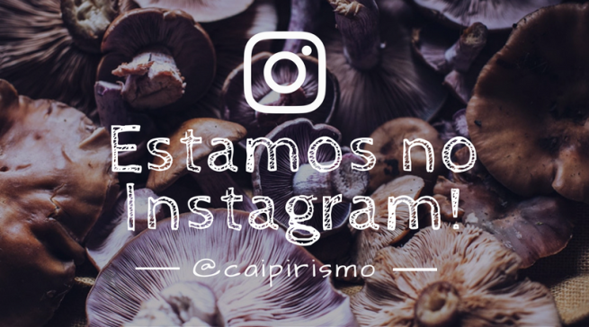 Estamos no Instagram!